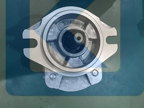 HONOR Gear Pump 2BB1P16L