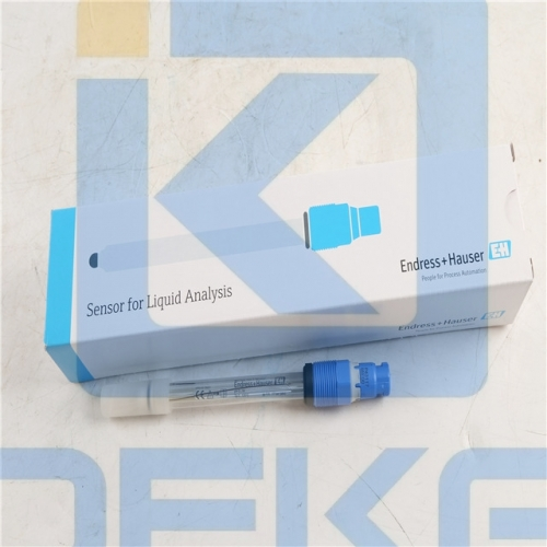 E+H Liquid Switch CPS11D-7BA21